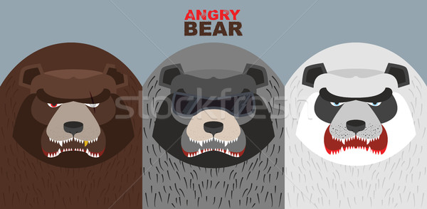 Set bad bears. Wild angry animals. Villains. Vector illustration Stock photo © popaukropa