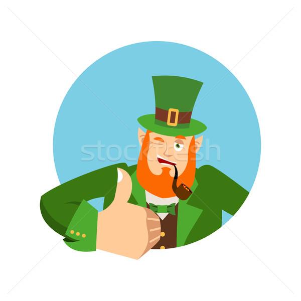 счастливым день карлик красный борода Сток-фото © popaukropa