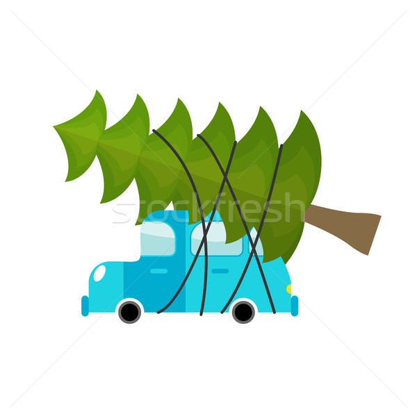 Car and fir-tree. Machine driven by green tree in new year. Gree Stock photo © popaukropa