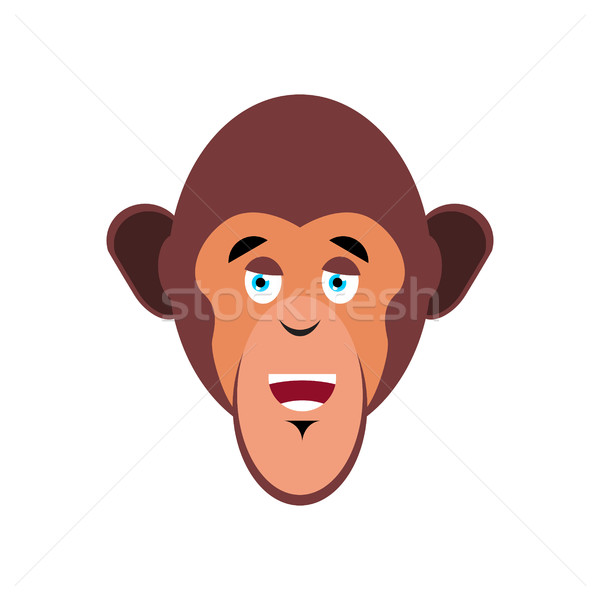 Majom boldog vidám érzelem izolált csimpánz Stock fotó © popaukropa