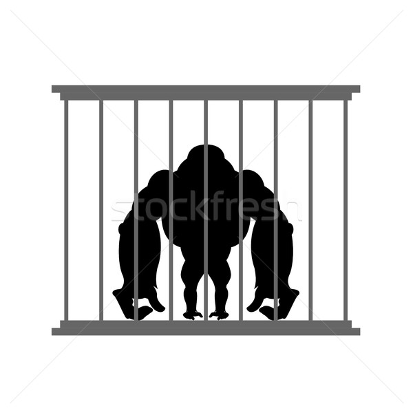 Gorilla in cage. Animal in  Zoo behind bars. Big and strong monk Stock photo © popaukropa