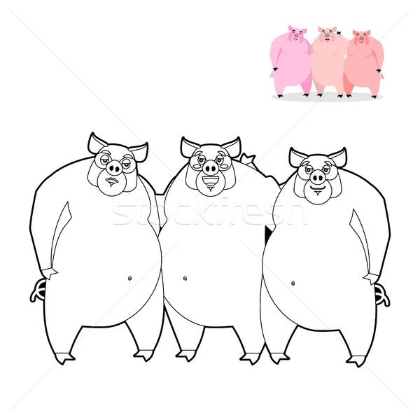 Porco livro para colorir três pequeno porcos linear Foto stock © popaukropa