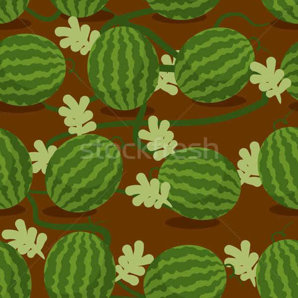 Stock photo: Water-melon plantation seamless pattern. Fruity vector backgroun