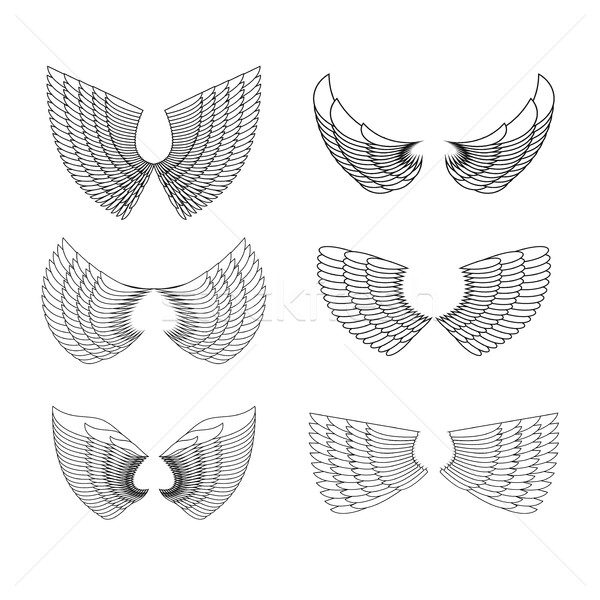 Wings Set. Vector illustration Stock photo © popaukropa