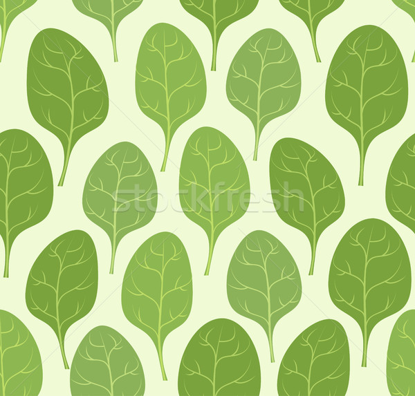 Spinach leaves seamless pattern. Vector background Veggie plants Stock photo © popaukropa