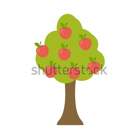 Apple tree isolated. Garden wood with apples on white background Stock photo © popaukropa