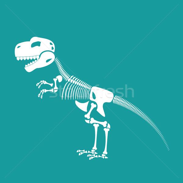 Dinosaur skeleton isolated. Remains of Tyrannosaurus. Skull T-Re Stock photo © popaukropa