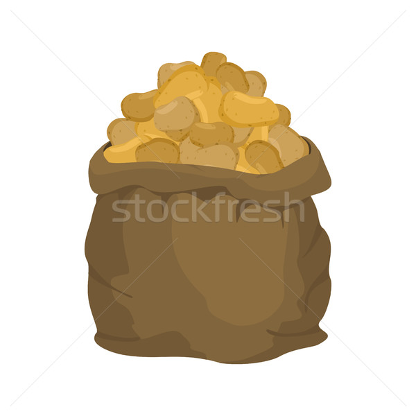 Potato Burlap bag. sack of vegetables. big crop on farm. sackful Stock photo © popaukropa