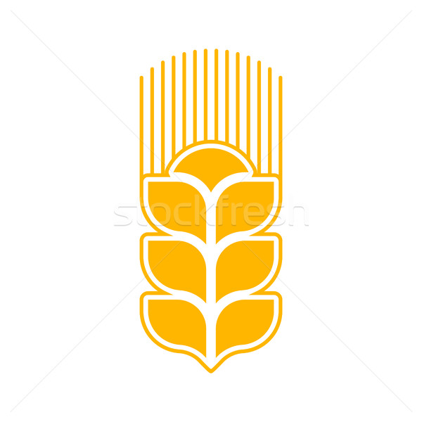 Wheat logo abstract. Agricultural emblem sign isolated Stock photo © popaukropa