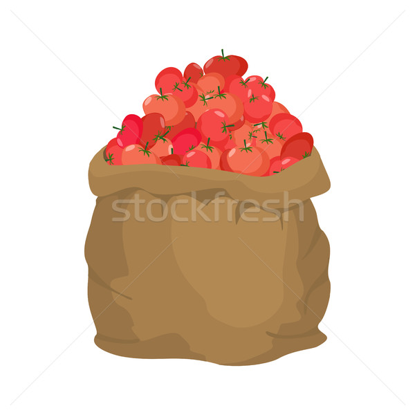 Tomate toile de jute sac sac légumes grand Photo stock © popaukropa
