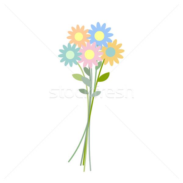 букет Полевые цветы изолированный цветок белый весны Сток-фото © popaukropa