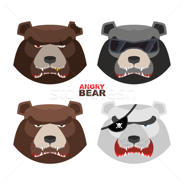 Set angry bears. For logo and emblem sport club. Bear's mouth wi Stock photo © popaukropa