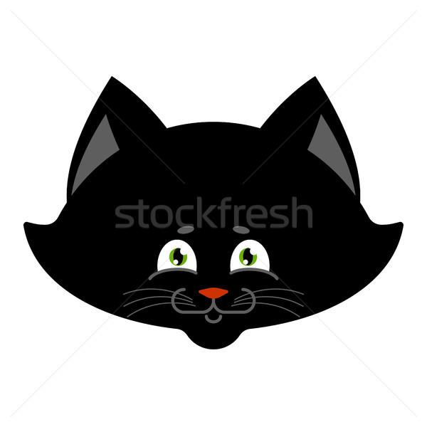Black cat isolated. Sweetheart Kitten home pet Stock photo © popaukropa