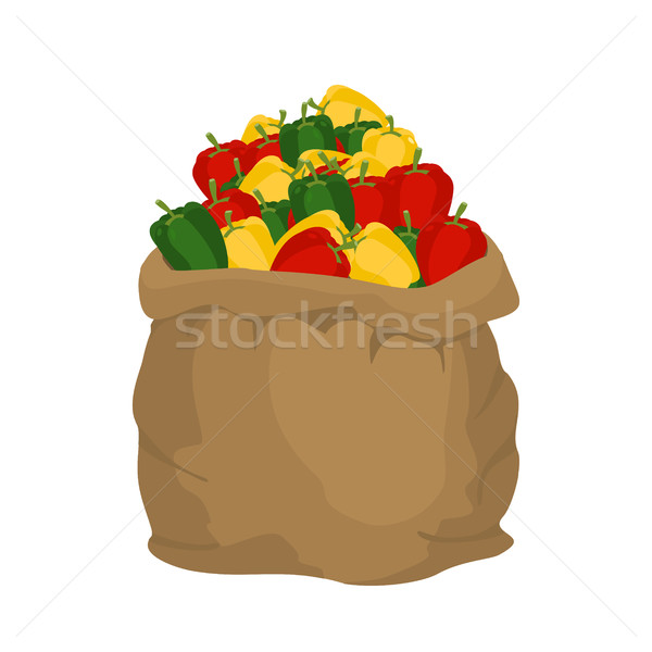 Pepper Burlap bag. sack of vegetables. big crop on farm. sackful Stock photo © popaukropa