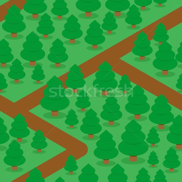 Foresta abete rosso naturale alberi texture Foto d'archivio © popaukropa