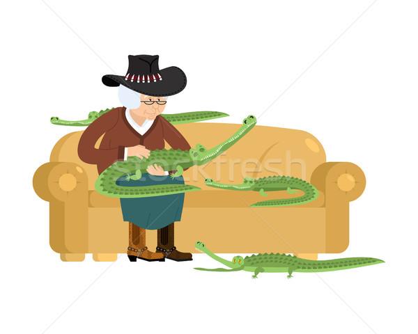 Ausztrál nagymama krokodil öregasszony aligátor díszállat Stock fotó © popaukropa