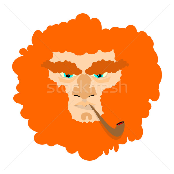 Leprechaun with red beard. St. Patricks Day character. Irish hol Stock photo © popaukropa