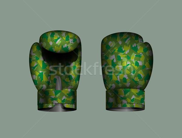 Conjunto luvas de boxe militar eps 10 esportes Foto stock © popaukropa