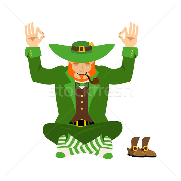 Irish Yoga. Leprechaun meditation. Dwarf with red beard enlighte Stock photo © popaukropa