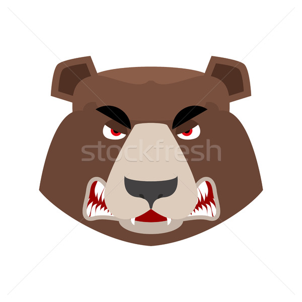 Stockfoto: Beer · boos · grizzly · agressief · emotie · gezicht