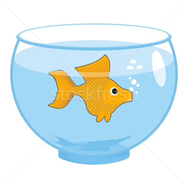 Goldfish аквариум изолированный магия морской животные Сток-фото © popaukropa