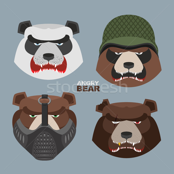 Stock photo: Wild angry bears set. Angry Panda bear in a military helmet, bea
