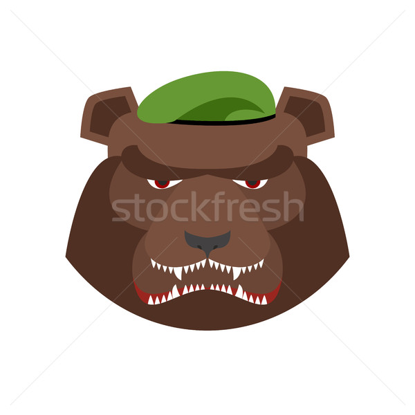 Angry bear in green beret. Aggressive Grizzly head. Wild animal  Stock photo © popaukropa