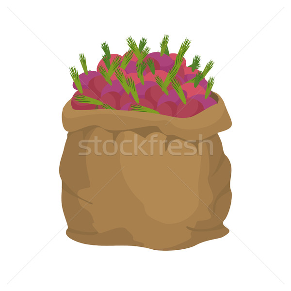 Beet Burlap bag. sack of vegetables. big crop on farm. sackful b Stock photo © popaukropa