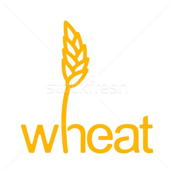 пшеницы уха рожь письма сельскохозяйственный эмблема Сток-фото © popaukropa
