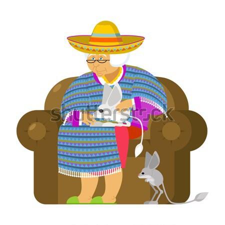 Mexicano abuela arma vieja silla gato Foto stock © popaukropa