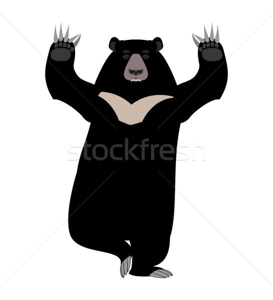 Medve jóga vadállat fekete nagy bestia Stock fotó © popaukropa