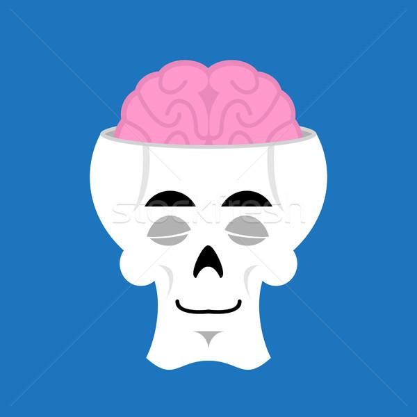 Crânio cérebro esqueleto cabeça emoção Foto stock © popaukropa