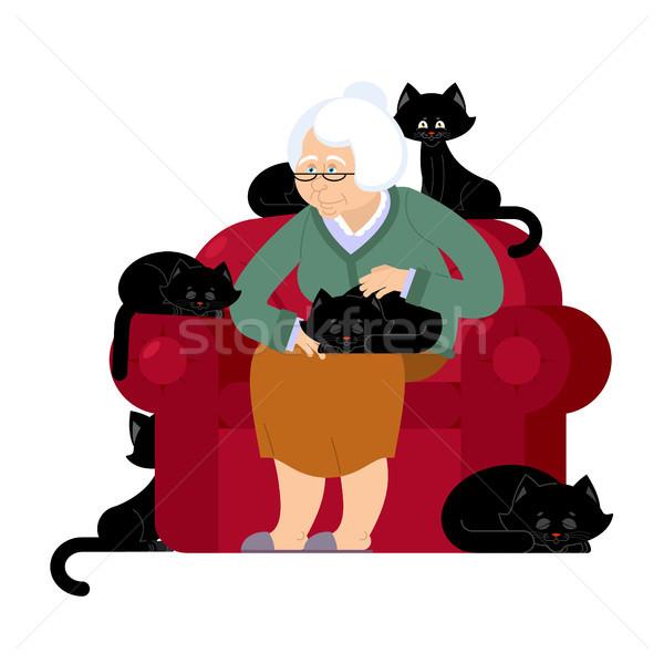 Nagymama macska ül szék nagyi hölgy Stock fotó © popaukropa