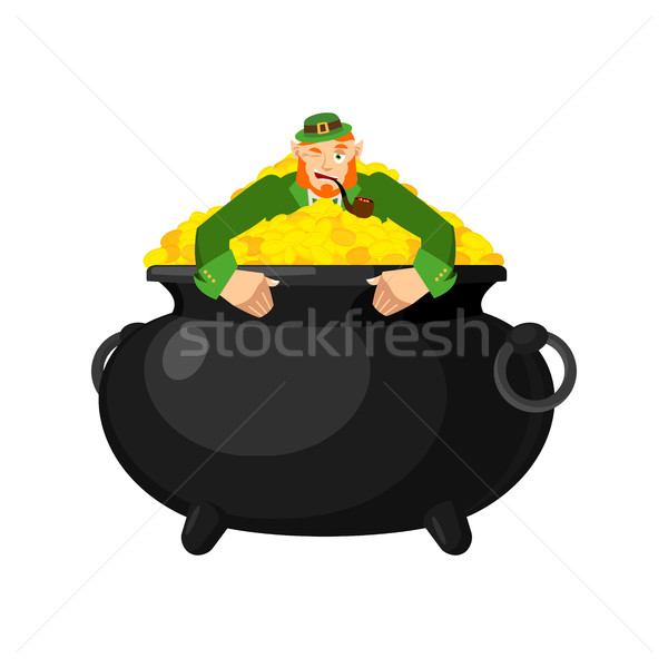 Leprechaun in pot gold. Dwarf with red beard and bowler golded c Stock photo © popaukropa