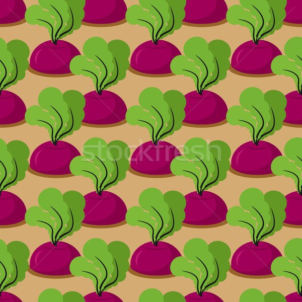 Beet seamless pattern. Plantation beets with haulm vector backgr Stock photo © popaukropa