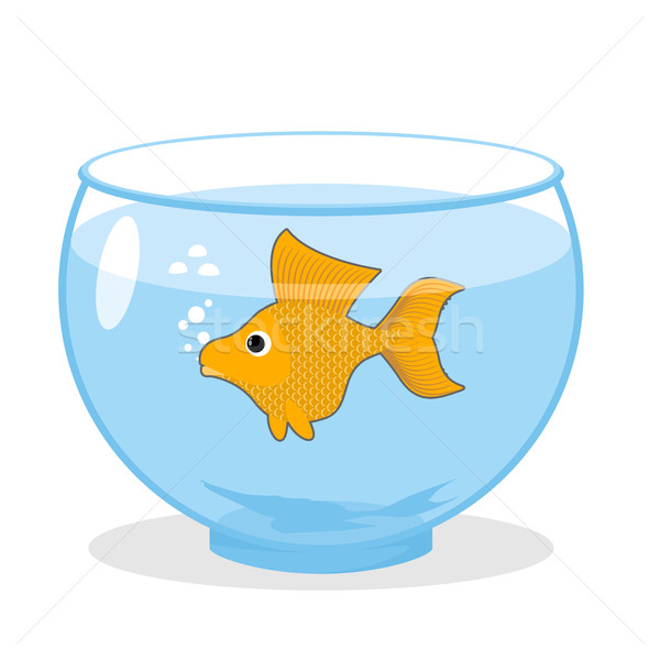 Goldfish in an aquarium. Symbol of fulfillment of all desires. M Stock photo © popaukropa