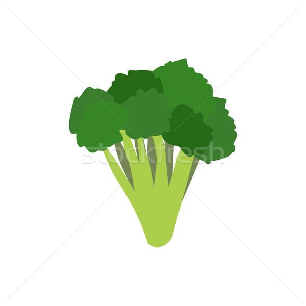 Brokoli yalıtılmış beyaz yararlı yeşil Stok fotoğraf © popaukropa