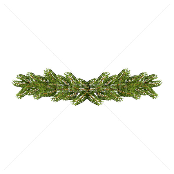 Stock photo: Spruce branches isolated. Christmas and New Year accessory