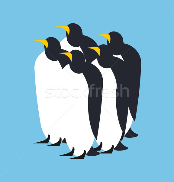 Penguin flock. Animal north pole. Bird Antarctica and Arctic Stock photo © popaukropa