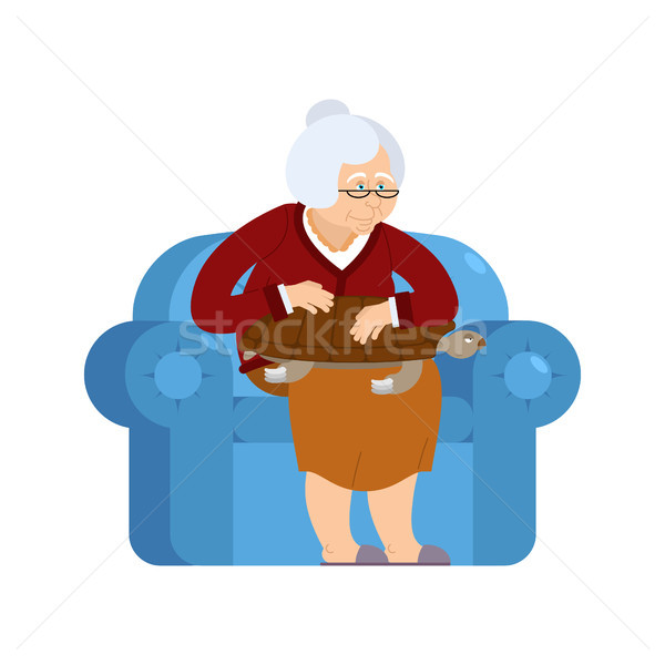 Grandmother and Turtle pet sitting on chair. grandma and tortois Stock photo © popaukropa
