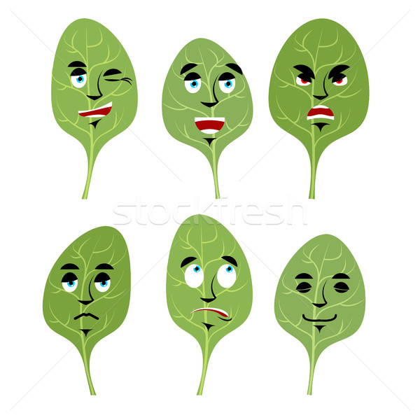 Emotions spinach. Set expressions avatar greens. lettuce leaf Go Stock photo © popaukropa