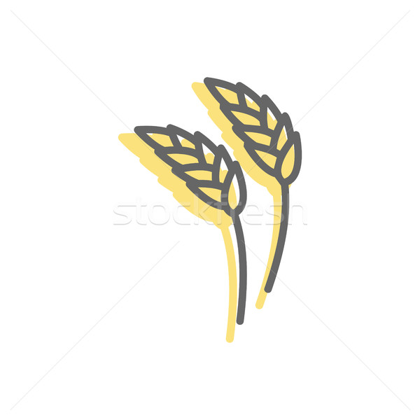 Rye ear line icon. wheat  Sign for production of bread and baker Stock photo © popaukropa