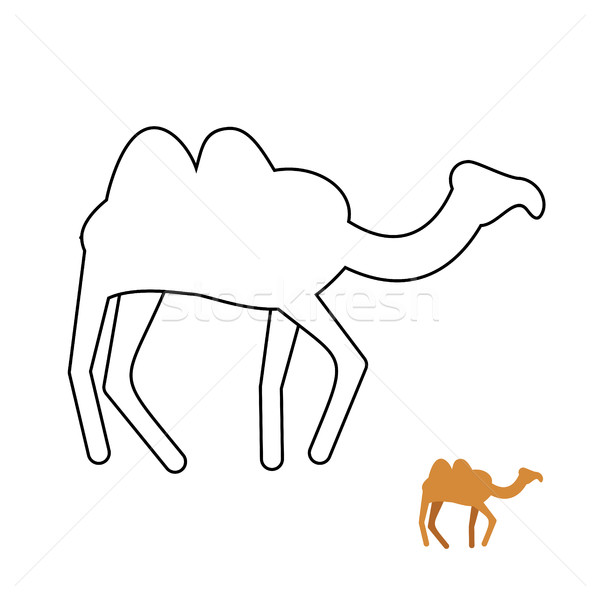 Camel coloring book. Desert animal vector illustration. Stock photo © popaukropa