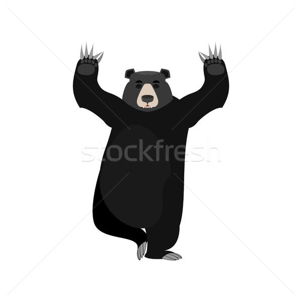 Baribal yogi. American Black Bear yoga. Wild animal zen and rela Stock photo © popaukropa