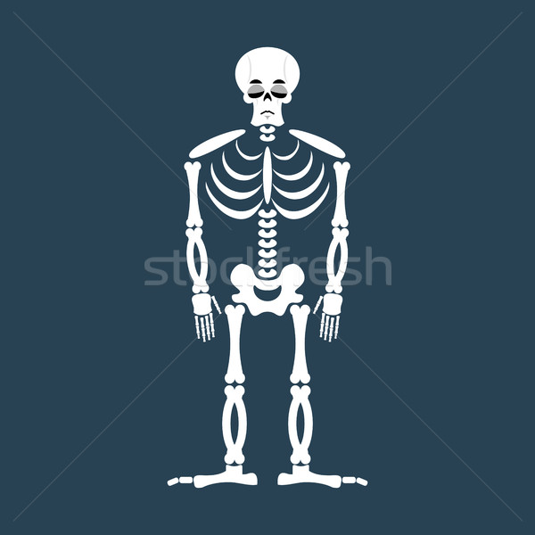 Skeleton sad Emoji. Skull  emotion sadness. Human bones Stock photo © popaukropa