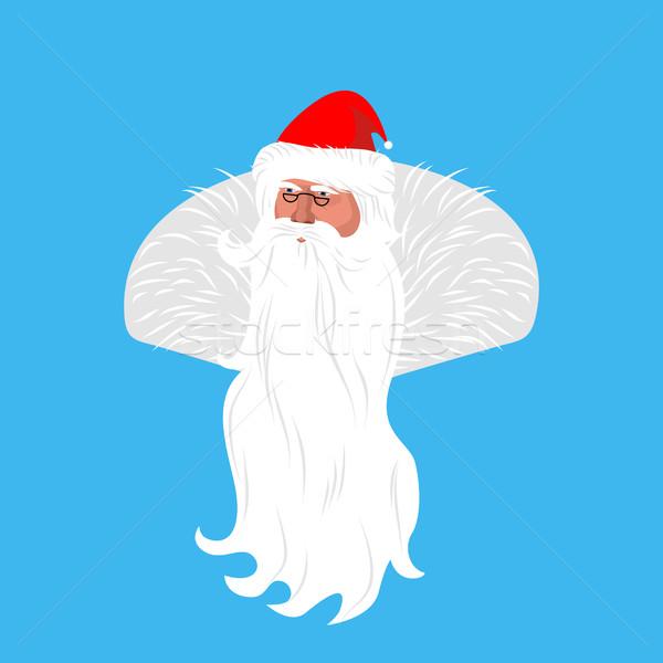 Mikulás arc avatar karácsony nagyapa fej Stock fotó © popaukropa