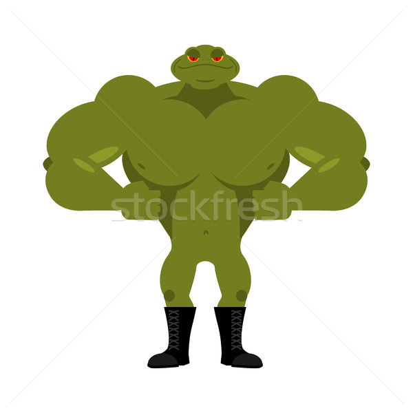 Strong frog. powerful toad with large muscles. Amphibian animal  Stock photo © popaukropa
