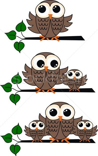 совы коричневый филиала семьи дерево природы Сток-фото © popocorn