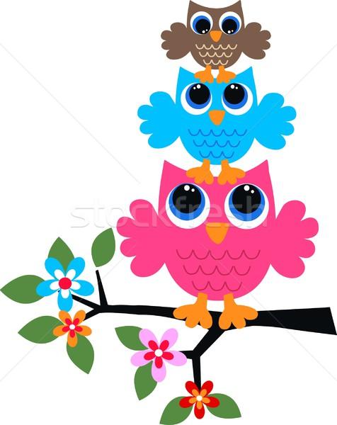 Três colorido corujas flor abstrato projeto Foto stock © popocorn