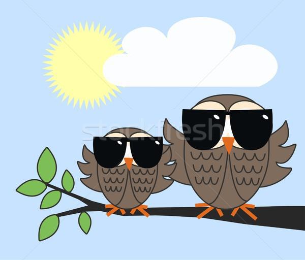 Cool Совы аннотация птица весело животные Сток-фото © popocorn